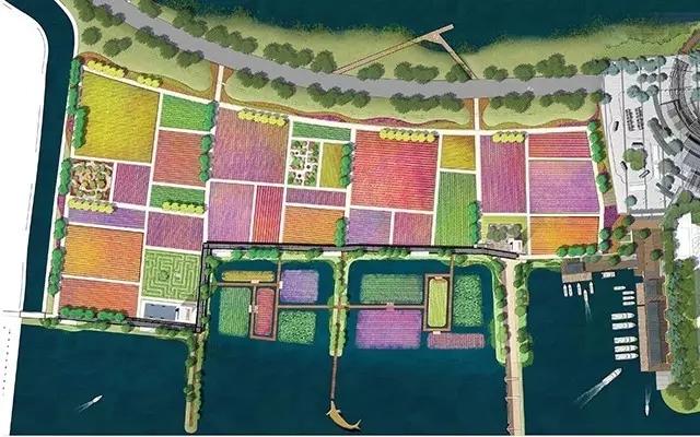 花田景观设计营造了大面积的花海景观.